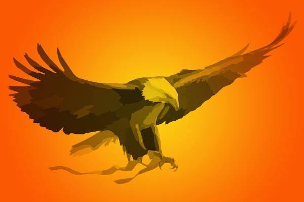 águilas más grande del mundo