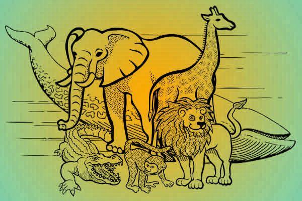 animales mas grandes del mundo