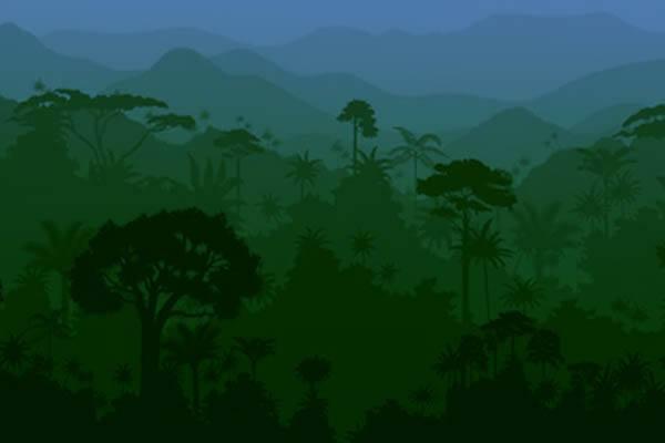 bosques más grandes del mundo